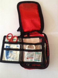 Contents of REI Day Pack First-Aid Kit