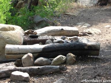 Twin Forks Cmpsite Fire pit