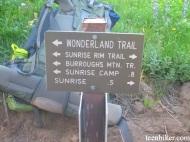 Junction of Sunrise Rim Trail and Wonderland Trail