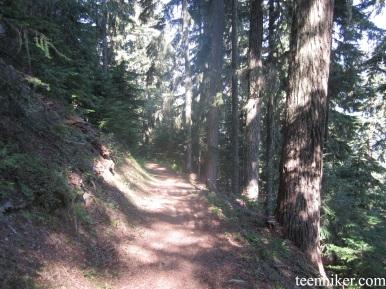 Trail Leaving Tamanos camp